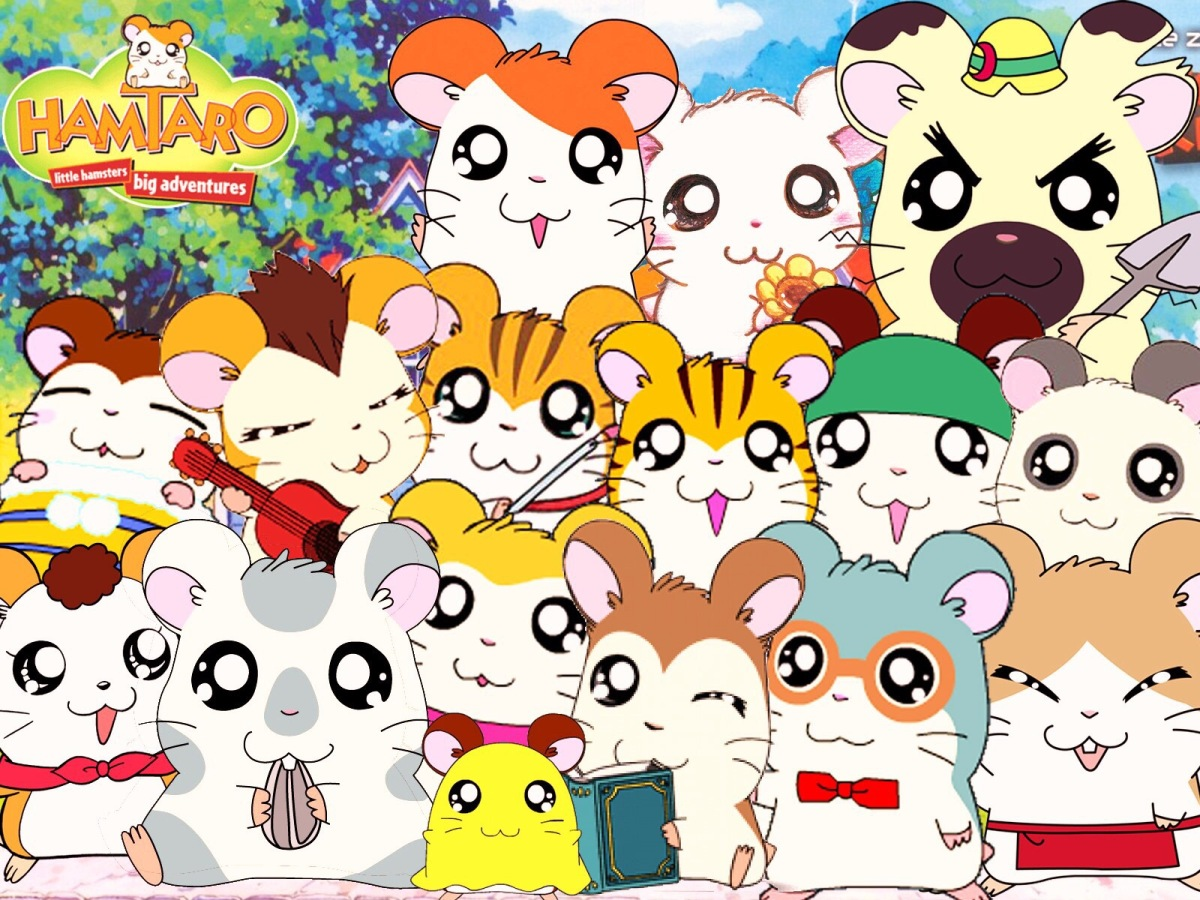anime: hamtaro on vhs